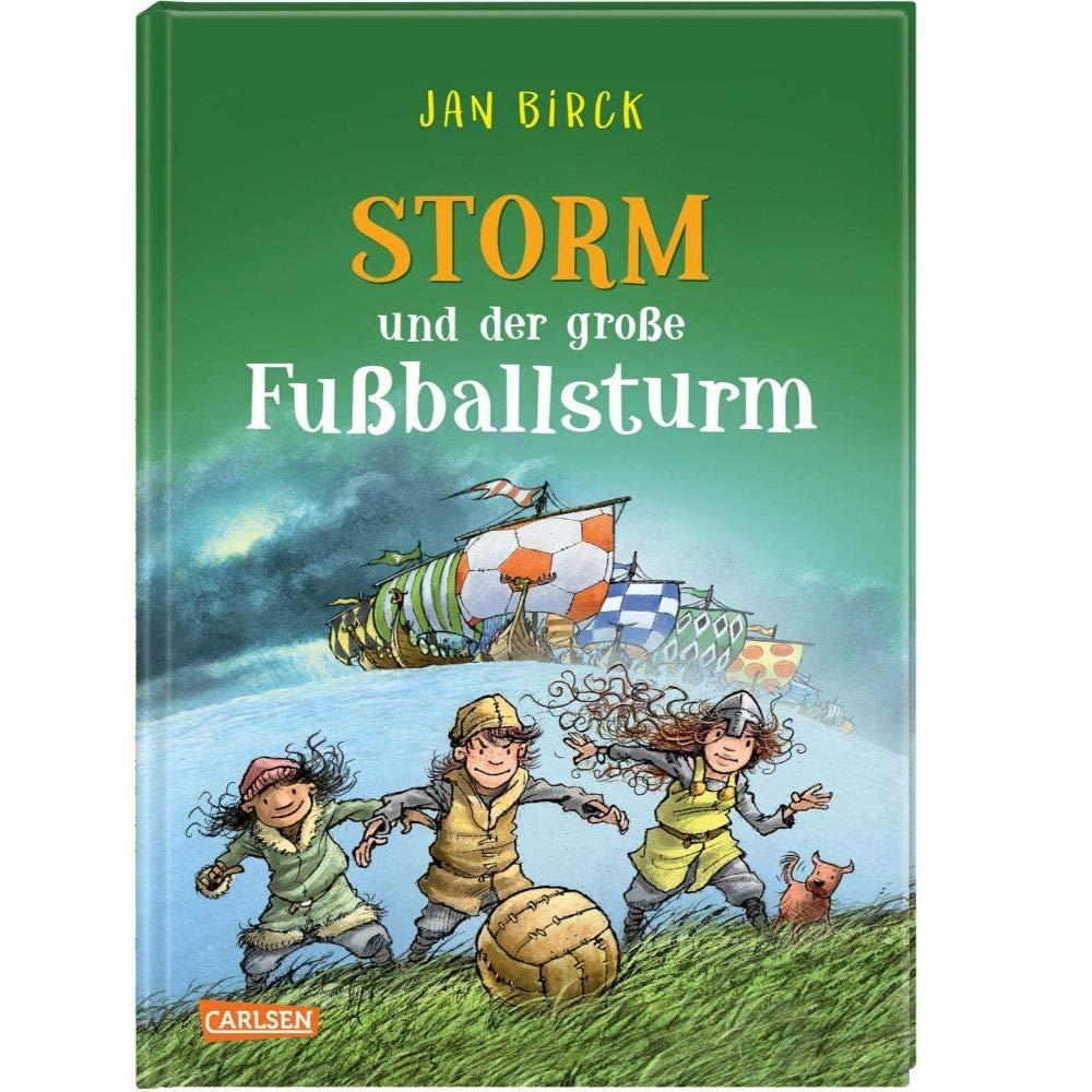 Kinderbuch: STORM und der große Fußballsturm